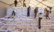 People sort through food aid in a processing facility